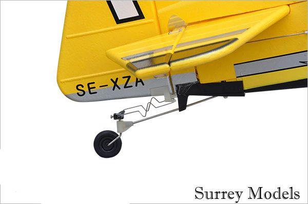 RC Large Scale 3D Plane